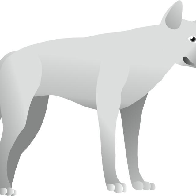 """Alpine Dingo Koolamooloo"" stock image"