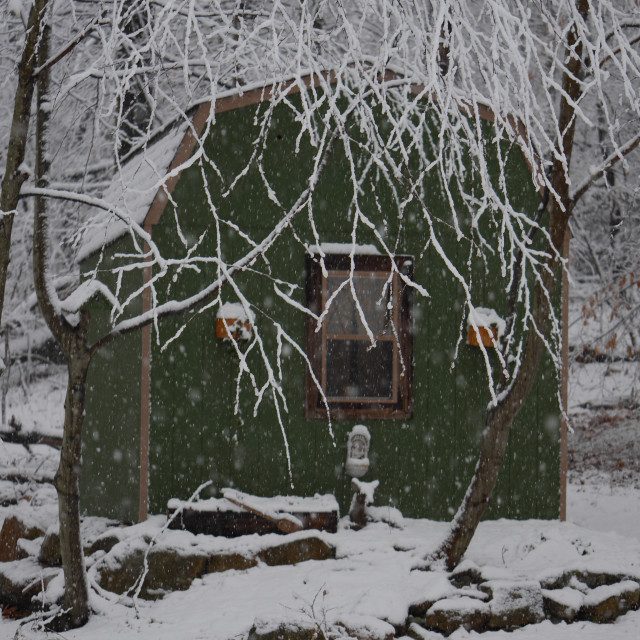 """GREEN SHED IN THE SNOW"" stock image"