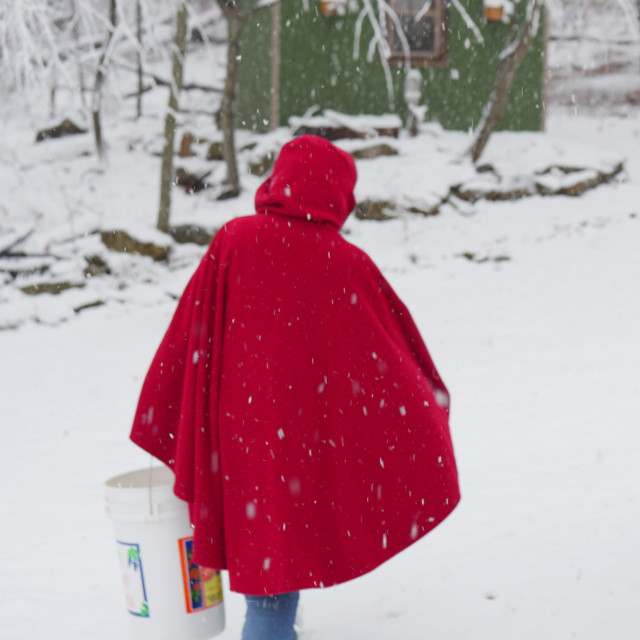 """GIRL IN RED HOOD AND COAT IN THE SNOW"" stock image"