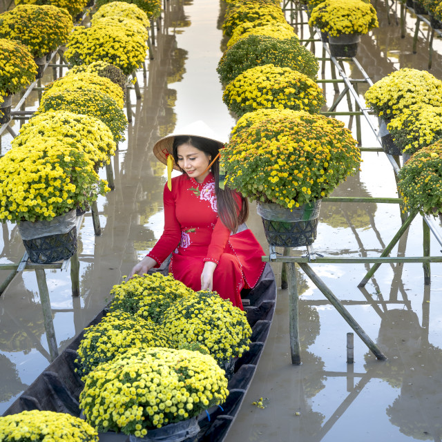 """The young girls wearing Vietnamese traditional clothing (ao ba ba) on the sampan, in yellow daisy floating farm"" stock image"