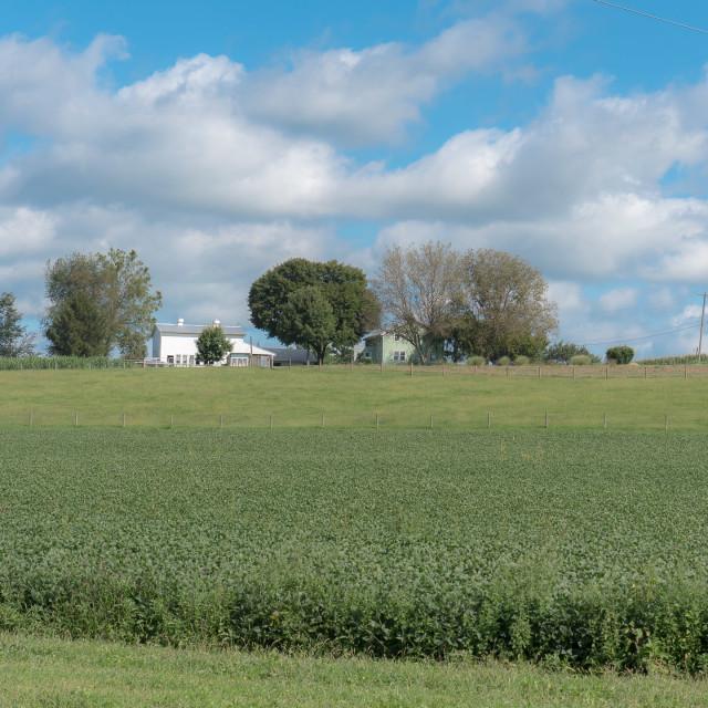 """AMISH FARM IN PENNSYLVANIA"" stock image"
