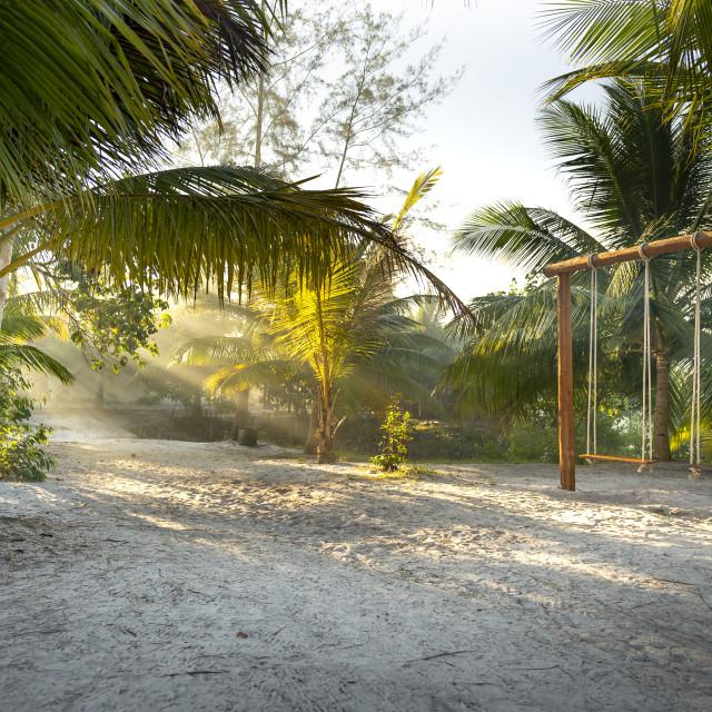"""The swing on the sandy beach on paradise island Villa Koh Rong Samloem. Cambodia"" stock image"