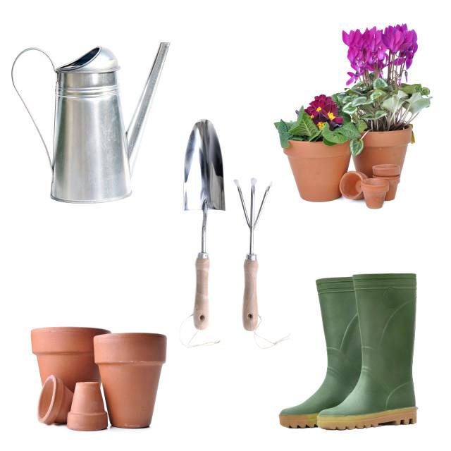 """""""arrangement of gardening equipment and flowerpot"""" stock image"""