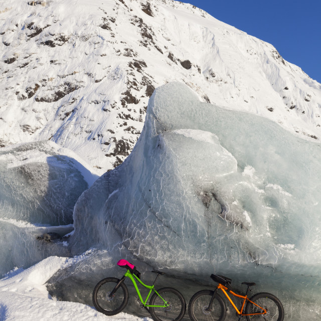 """""""Fatbikes, 907 fat tire bike and Fatback fat tire bike, resting against giant..."""" stock image"""