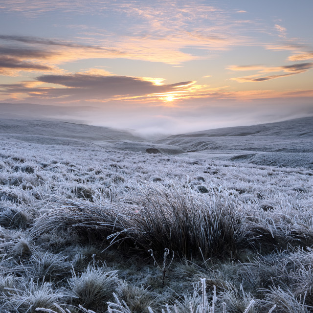 """A Frozen and Desolate North Pennines Landscape, Teesdale, County"" stock image"