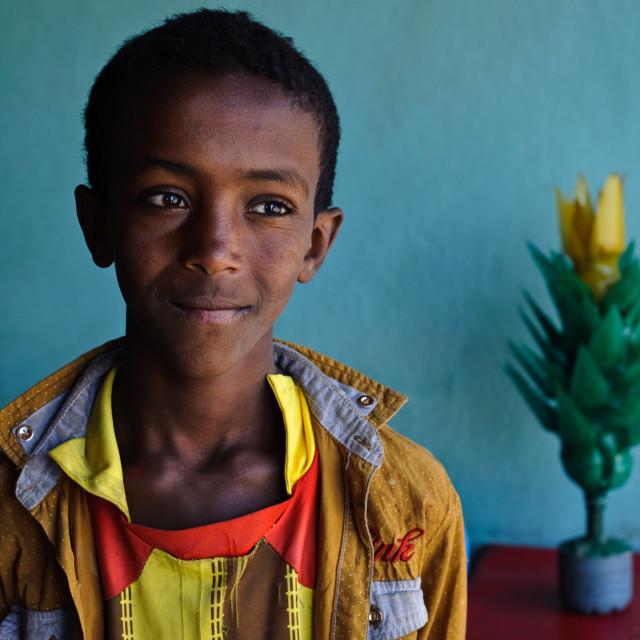 """Boy selling a plastic plant ( Ethiopia)"" stock image"