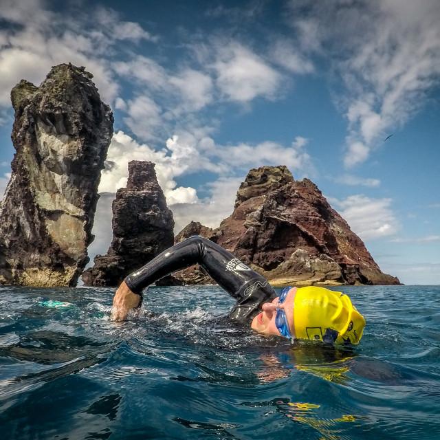 """Wild swim Galapagos Islands"" stock image"