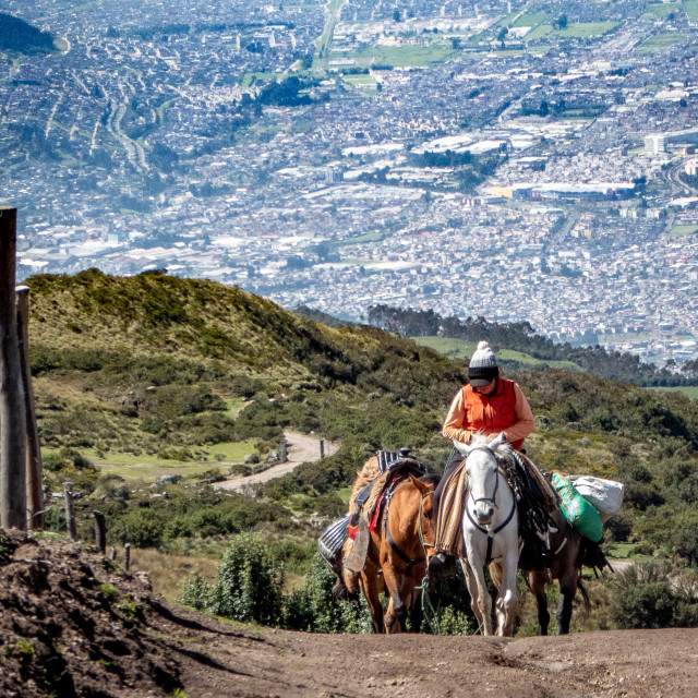 """Horse Over Quito"" stock image"