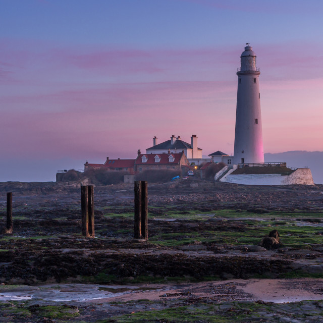 """St Mary's Lighthouse on a misty sunrise"" stock image"