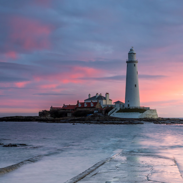 """""""St Mary's Lighthouse and the causeway"""" stock image"""