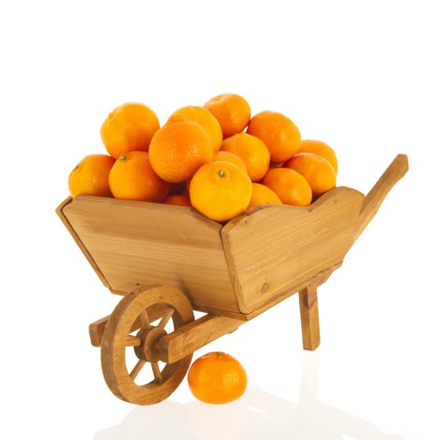 """wheel barrow with tangerines"" stock image"