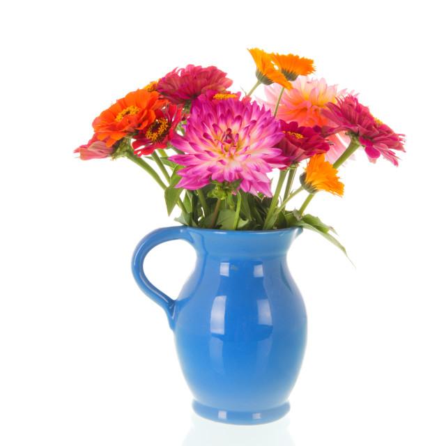 """Vase Zinnias and Dahlias from the garden"" stock image"