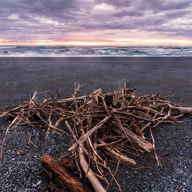 """A Pile of Driftwood at a Beach, Trinidad, California"" stock image"