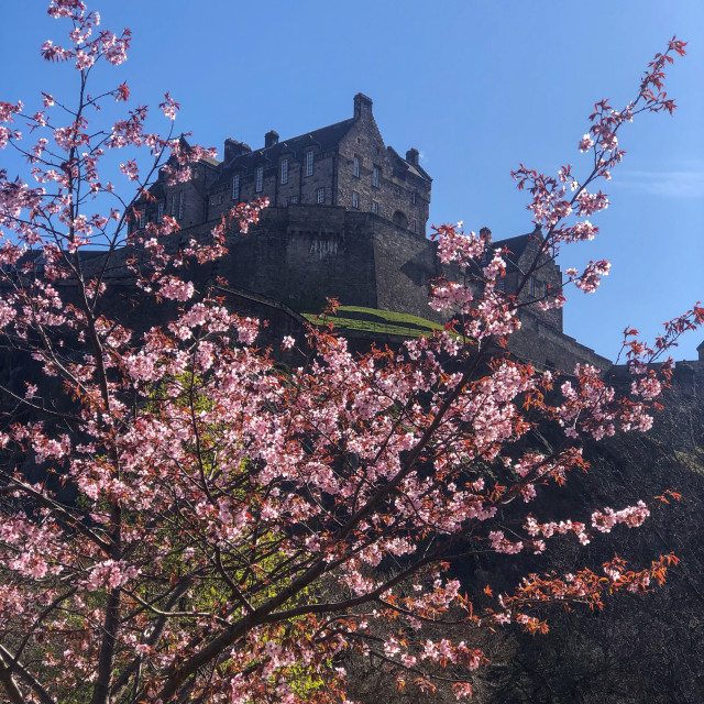 """Spring Sunshine - Edinburgh"" stock image"