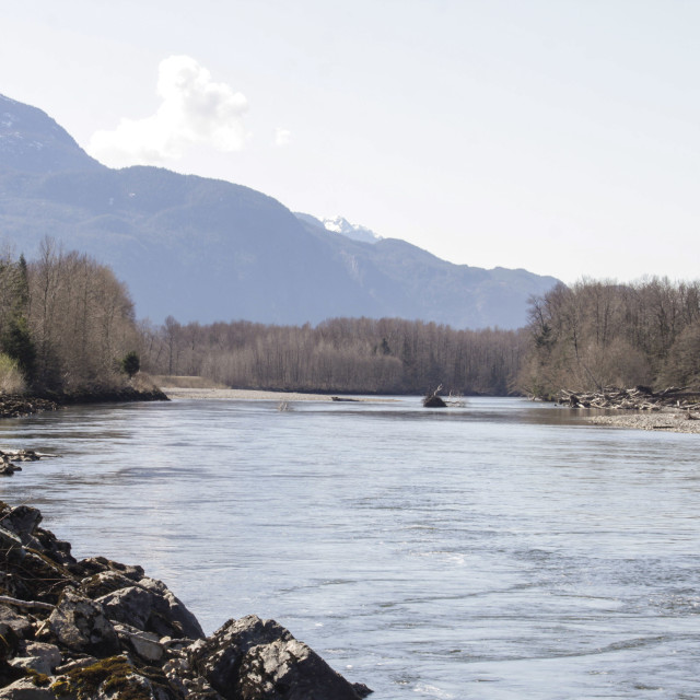 """Squamish River on beautiful spring morning"" stock image"