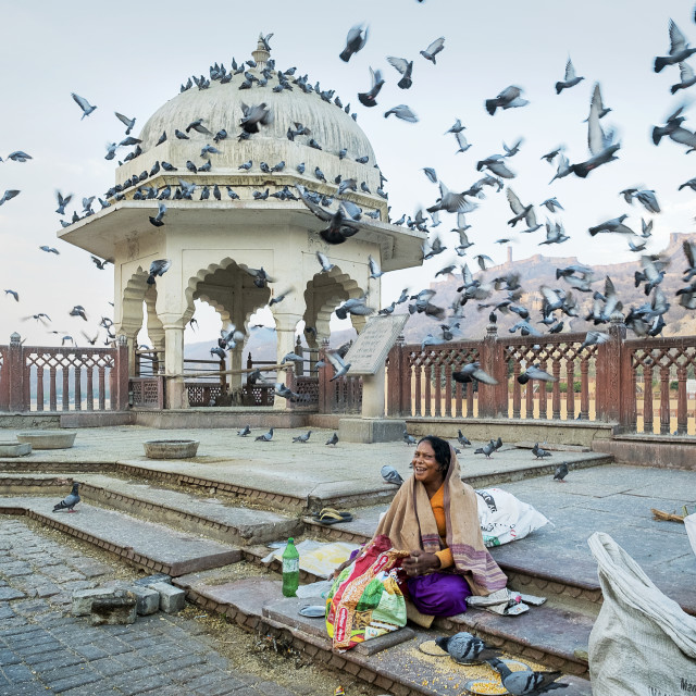 """""""Portrait of woman selling corn for pigeons, Amer Fort, Jaipur."""" stock image"""