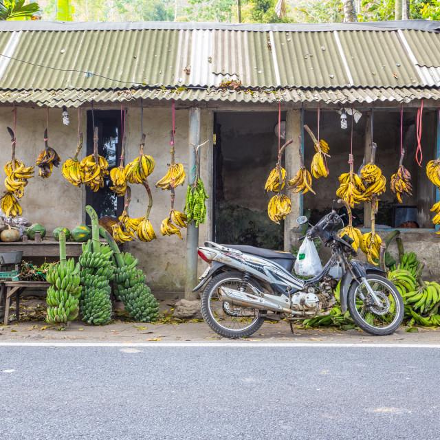 """Banana Shop in Indonesia"" stock image"