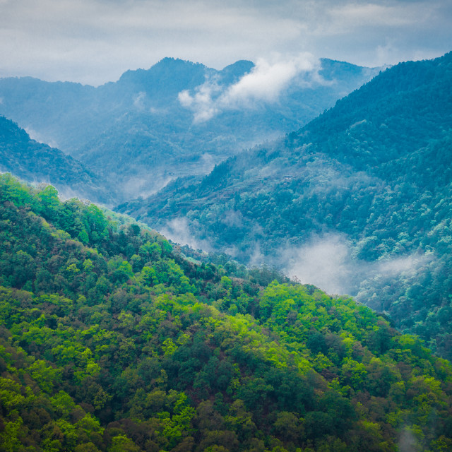 """Himalaya Mountain Fog"" stock image"