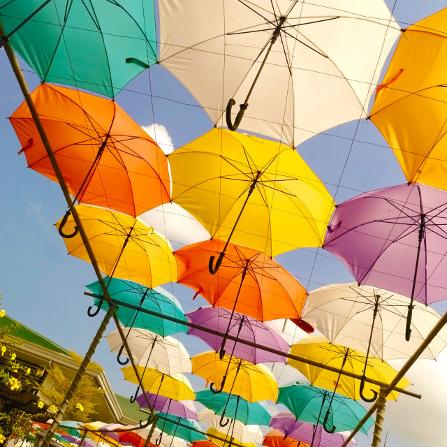 """Umbrellas in Balaoan"" stock image"