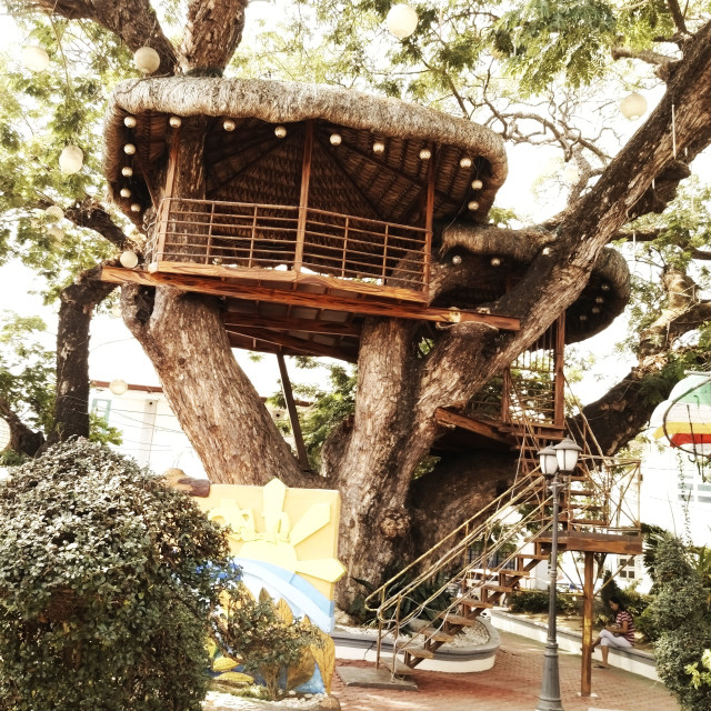 """treehouse in balaoan"" stock image"