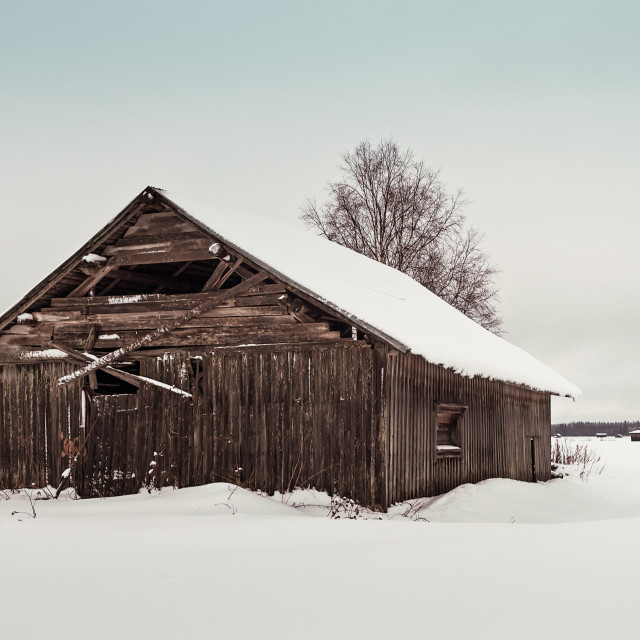 """""""Abandoned Barn House On The Snowy Fields"""" stock image"""