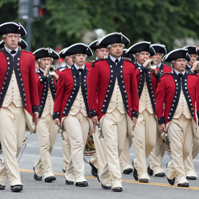 """""""The National Memorial Day Parade"""" stock image"""