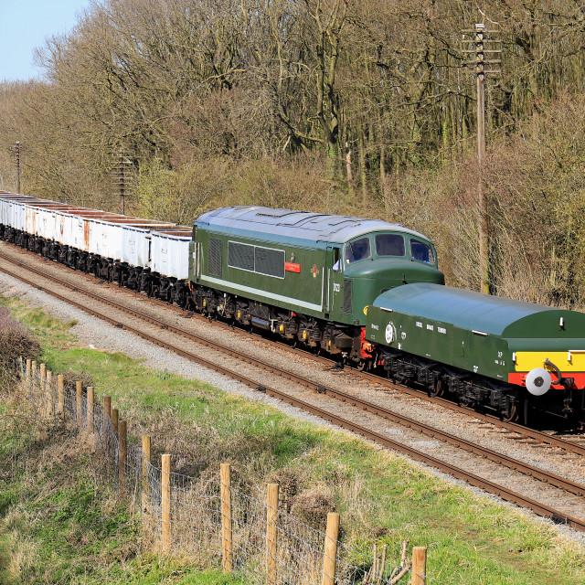 """BR Class 45 'Peak' D123"" stock image"