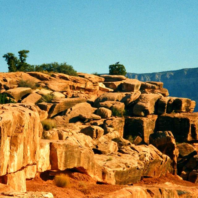 """Toroweap Boulders"" stock image"