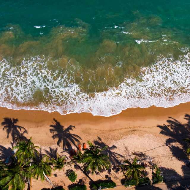"""""""Tangalle tropical beach in Sri Lanka aerial view"""" stock image"""