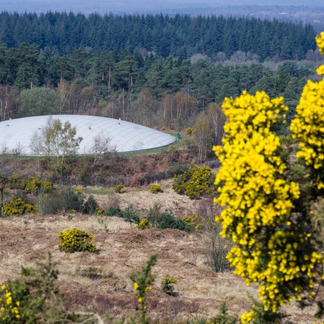 """""""Flying Saucer (enclosed reservoir)"""" stock image"""