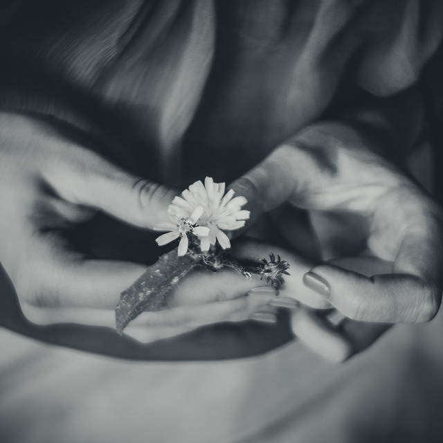 """Fragility moments"" stock image"