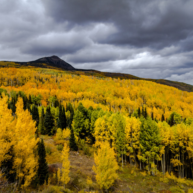"""Autumn Color in San Juan and Rocky Mountains of Colorado"" stock image"