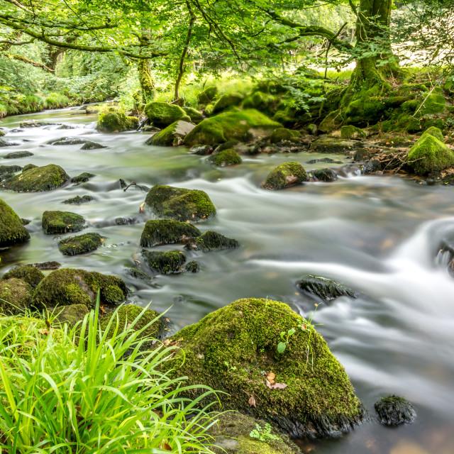 """Golitha Falls flowing"" stock image"