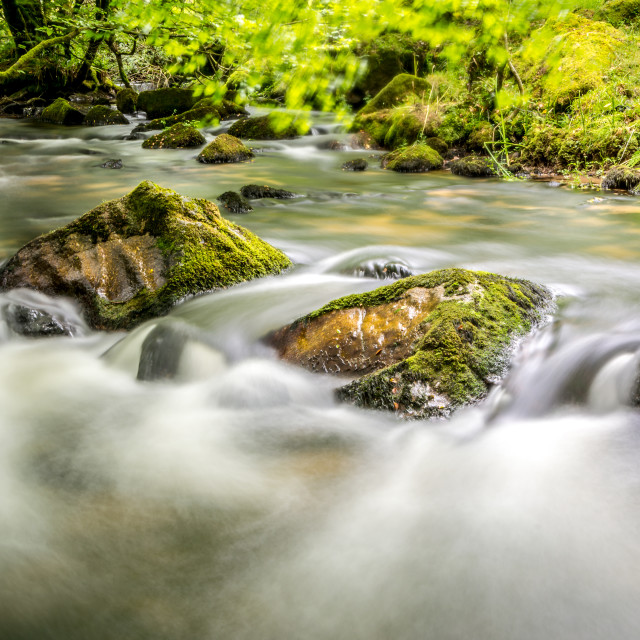 """Golitha Falls River"" stock image"