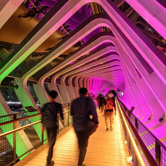"""""""Gelora Bung Karno - Crossing Bridge"""" stock image"""