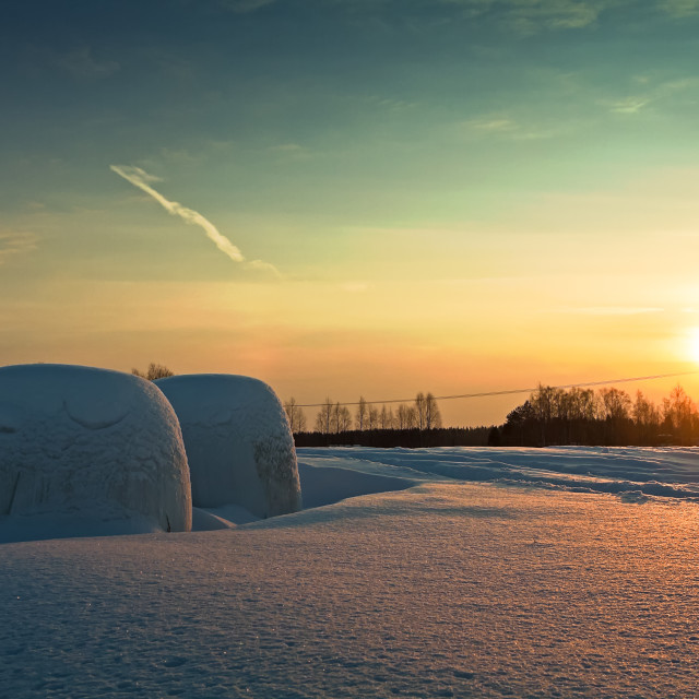 """""""Two Bales In The Winter Sunset"""" stock image"""