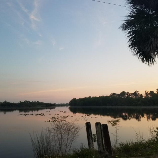 """Fox Lake Park in Titusville,fl"" stock image"