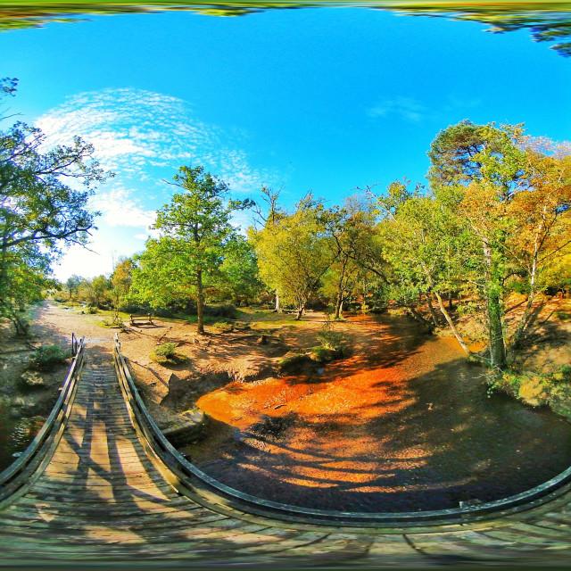 """Bridge over New Forest stream (Equirectangular 360vr)"" stock image"