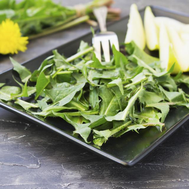 """Dandelion salad with green apples"" stock image"