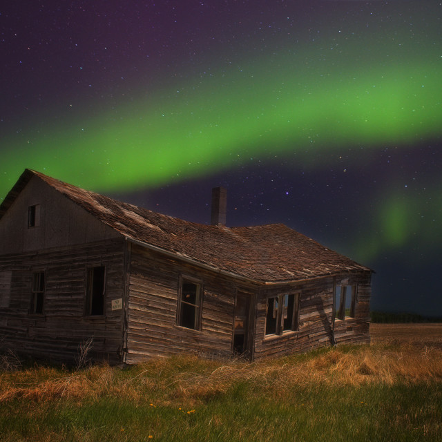 """""""Bright green and purple northern lights over a crumbling old farm house in a rural nighttime landscape"""" stock image"""