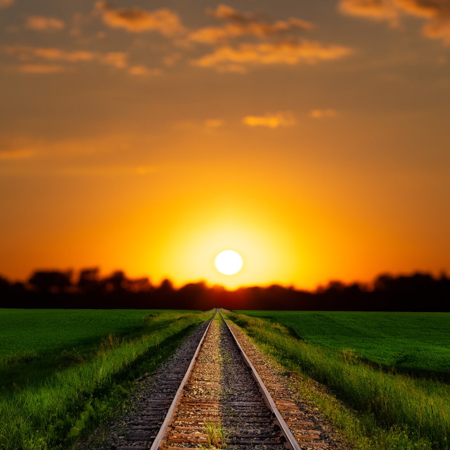 """""""A railroad track dividing lush green agriculture fields under a bright orange and yellow sunset"""" stock image"""