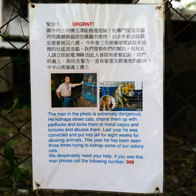 """""""Warning poster about a man who kidnaps street cats, Special Administrative..."""" stock image"""