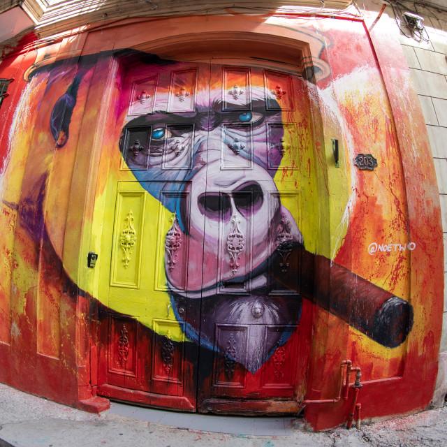 """Havana streetlife"" stock image"