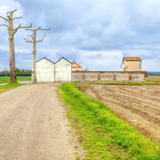 """""""Countryside old cemetery. Color image"""" stock image"""