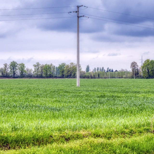 """""""Countryside meadow field. Color image"""" stock image"""