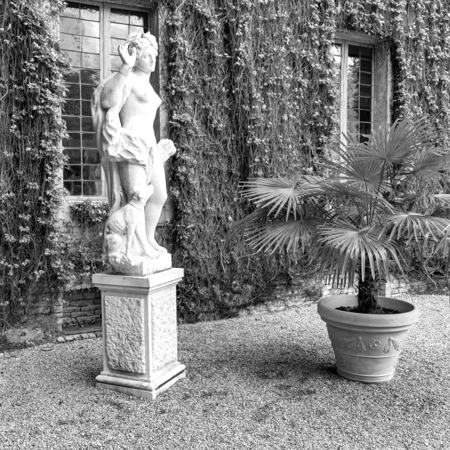 """""""Ancient palace. Black and white photo"""" stock image"""