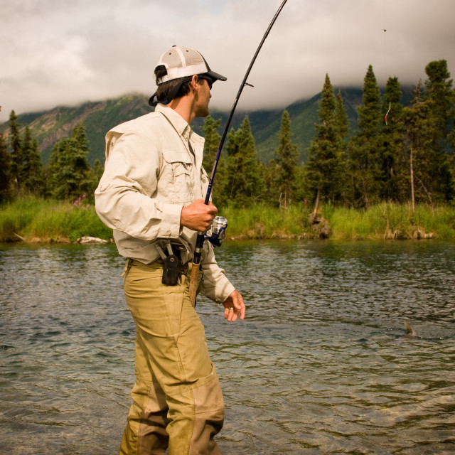 """Reeling in a Sockeye Red (Oncorhynchus nerka) Salmon on the Kijik River"" stock image"