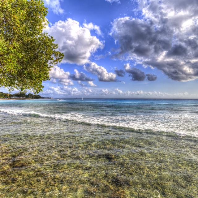 """Barbados Summer Days"" stock image"