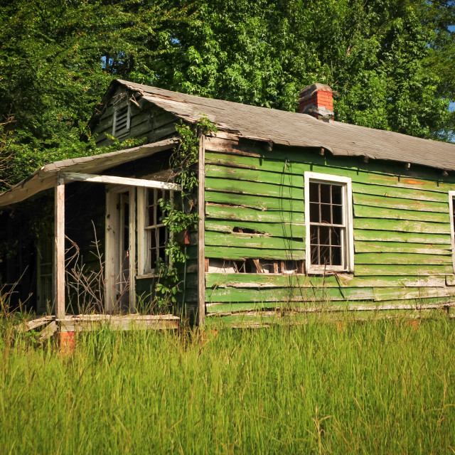 """Abandoned Green House in Tuskeegee Alabama"" stock image"