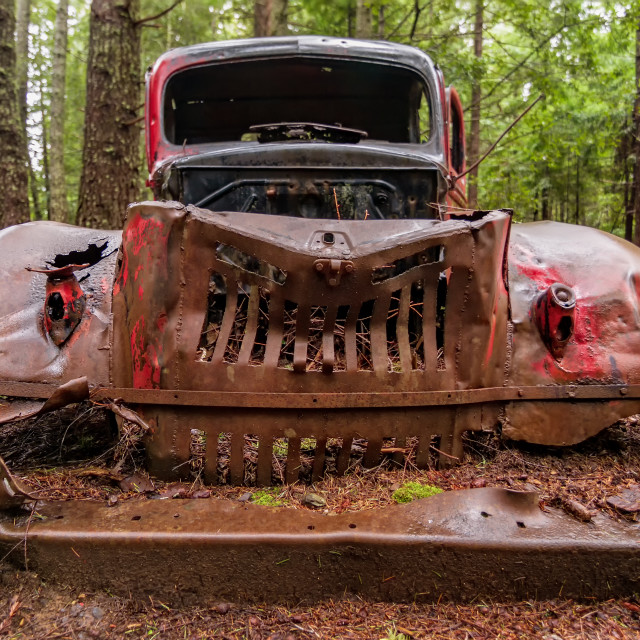 """An Old Rusty Vehicle in the Forest"" stock image"